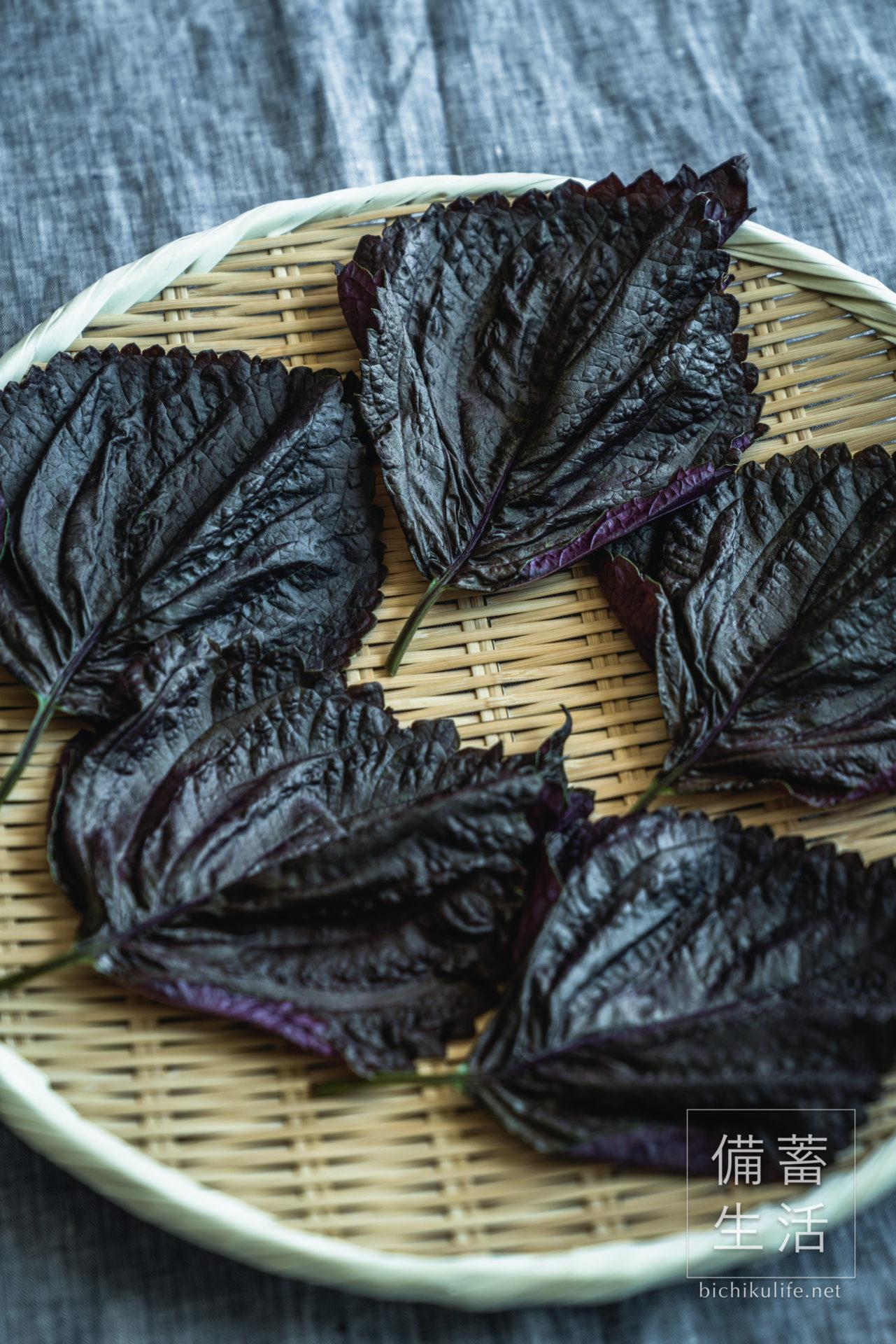 あかじそ 干し野菜づくり|干し赤紫蘇の作り方
