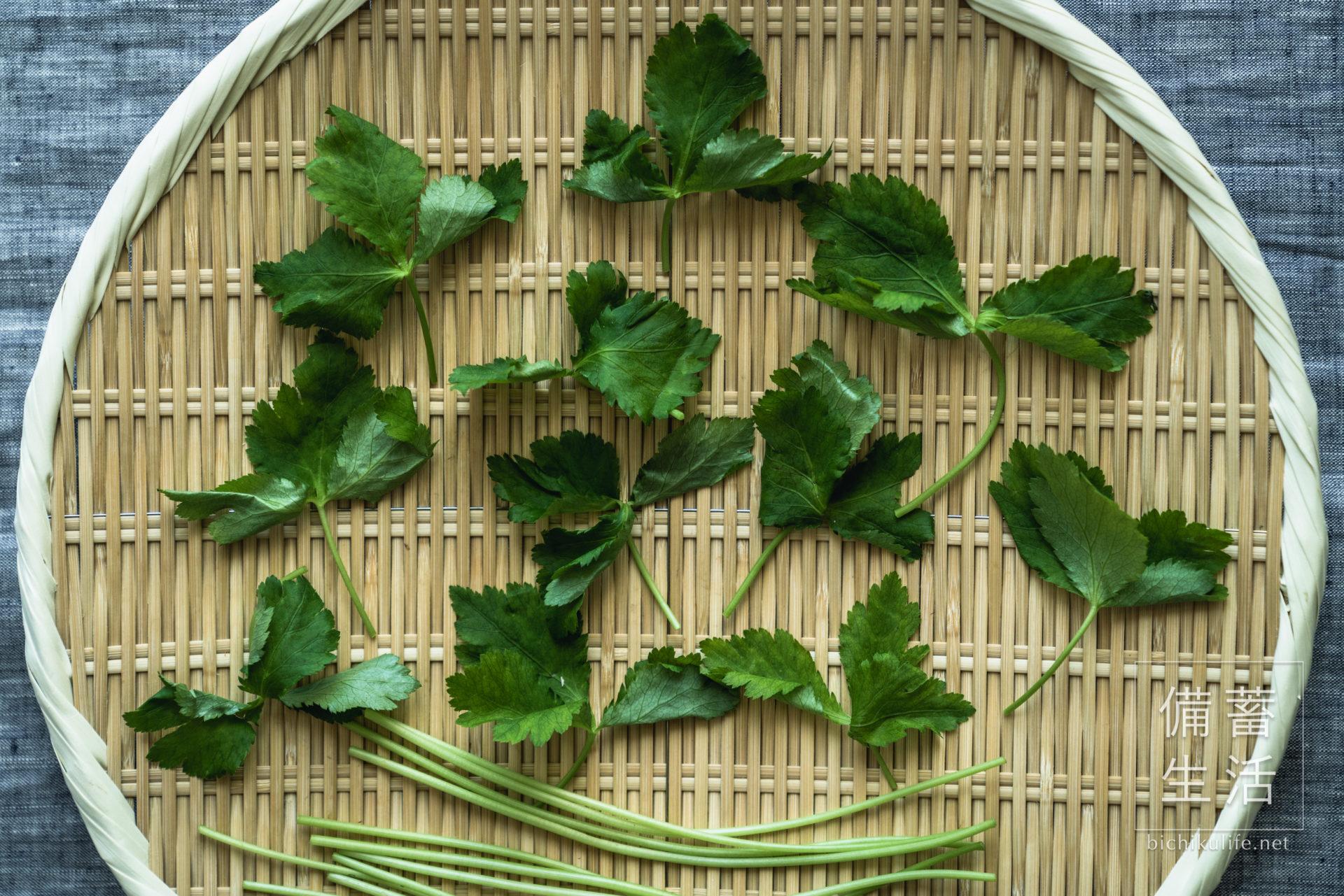 みつば 干し野菜づくり|干し三つ葉の作り方