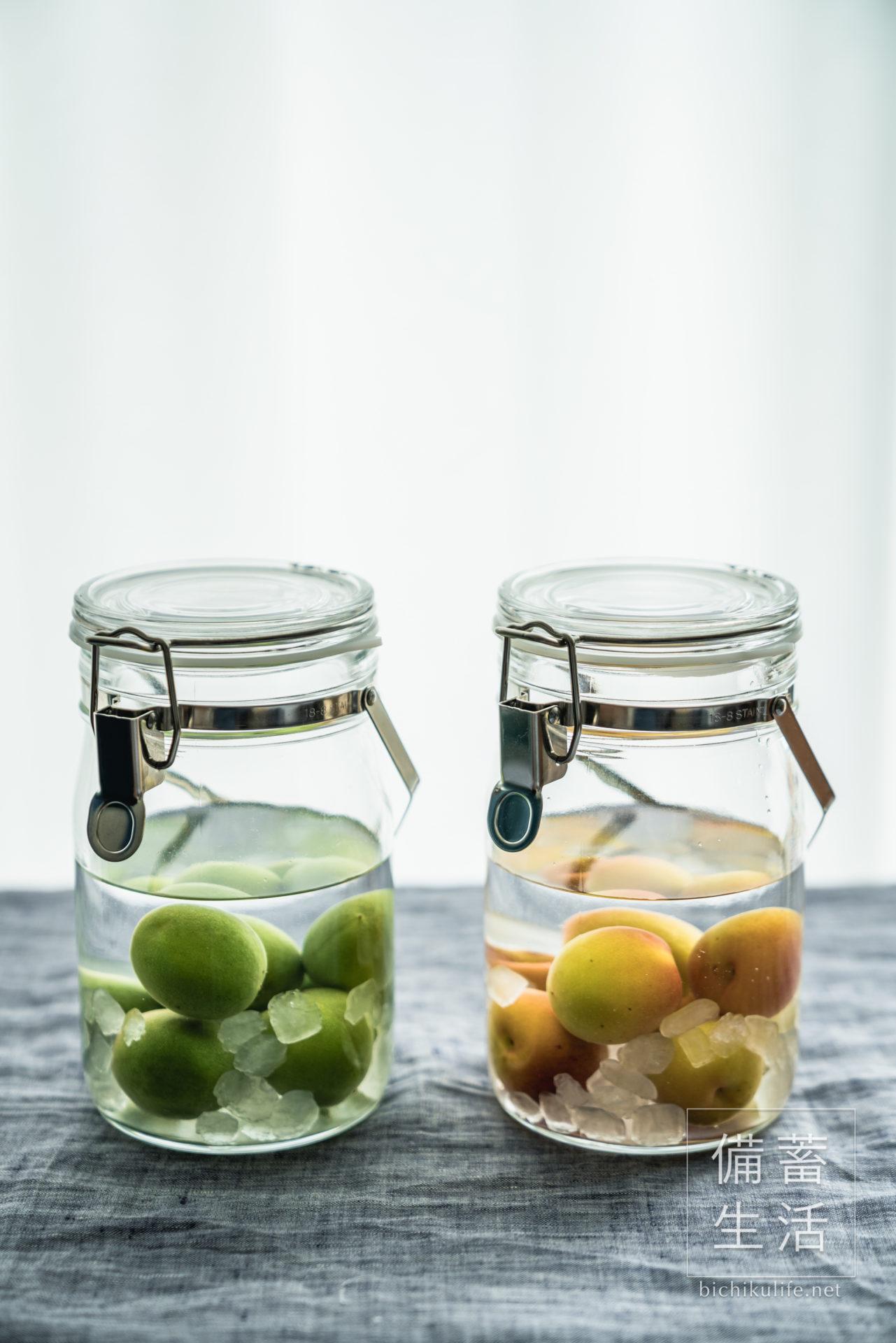 梅酒づくり 自家製梅酒を作るアイデア、青梅の自家製梅酒と完熟南高梅の自家製梅酒